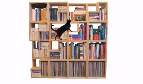cat-library-1